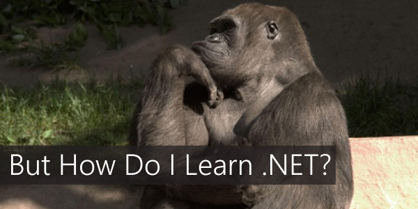 how-do-i-learn-dotnet